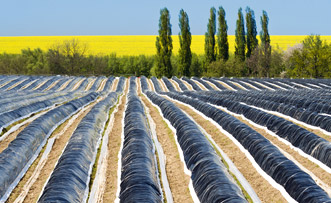 LUVOBATCH®-Agrar-UV Stabilisierung